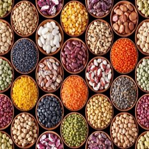 Alimentos para perder barriga-e-cintura-que-emagrecem-rapidamente-gordura-abdominal-que-emagrecem-dormindo-em-uma-semana-que-ajudam-a-queimar-a-gordura-em-1-semana-gordura-localizada