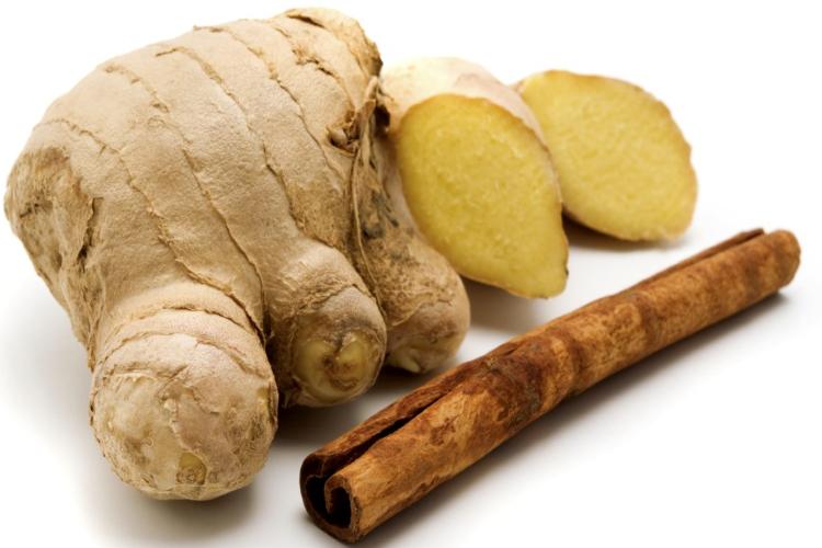 gingerol energiza os processos metabolicos promove sudorese